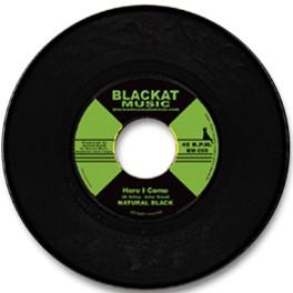 http://artikalmusic.com/wa_ps_1_5_2_0/img/p/1/1/4/114-thickbox_default.jpg