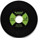 Rod Taylor - Never fade away / Ghana Riddim_Vinyle 45t